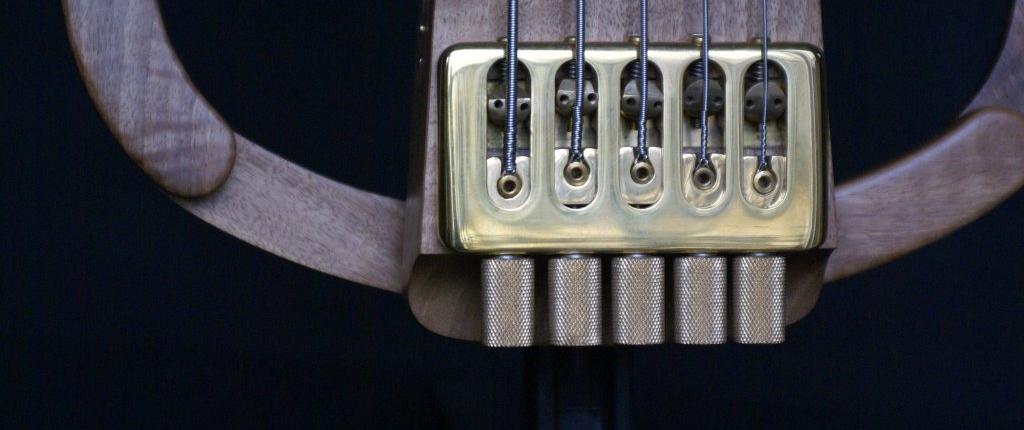 headless 5 strings bass